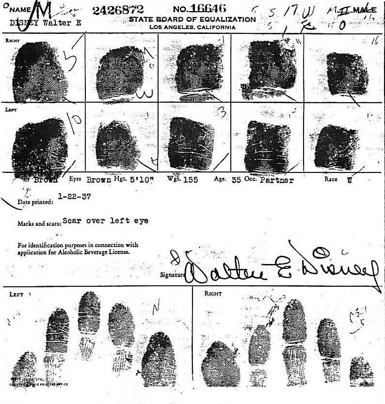 X - WALT DISNEY - One of his fingerprints shows an unusual characteristic! Disney